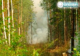 Požiare v Irkutskej oblasti, júl 2019