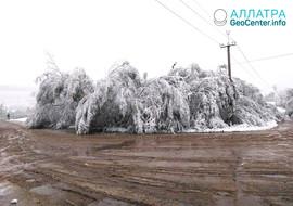 Снегопад в Хабаровском крае, сентябрь 2019
