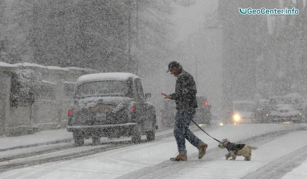 Алтайский край окутан снегом