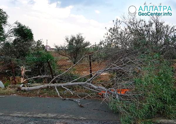 Торнадо на Кипре, октябрь 2018