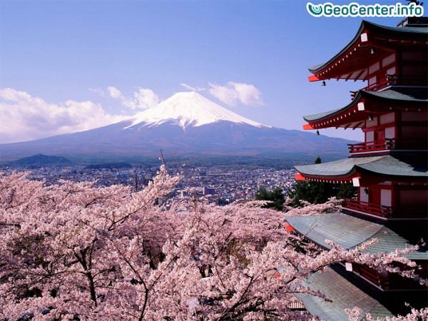 Статистика землетрясений за 2016 год в Японии