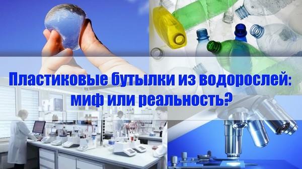 Пластиковые бутылки из водорослей: миф или реальность?
