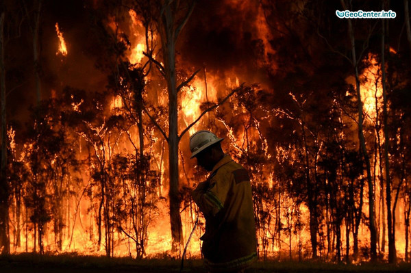Буйство лесных пожаров в Алжире, август 2017 года