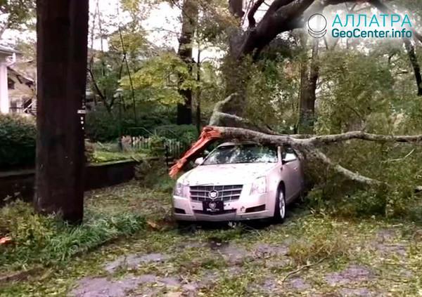 Последствия урагана «Флоренс» в США, сентябрь 2018