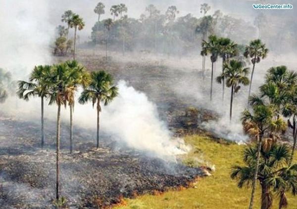 Пожар в природном заповеднике в Бразилии, октябрь 2017 года