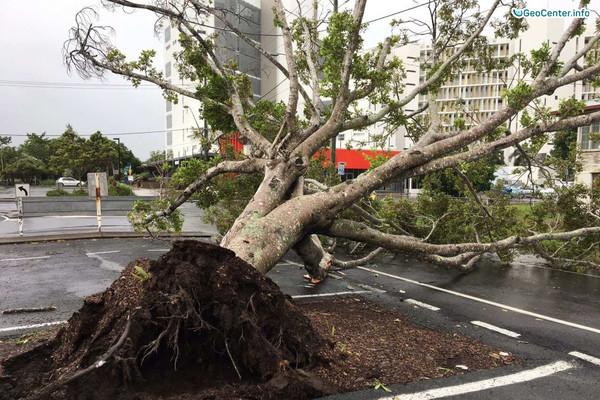 """Тропический циклон """"Дебби"""" в Австралии"""