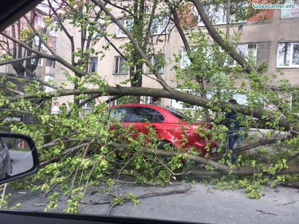 Ураганный ветер в Абхазии и во Владикавказе