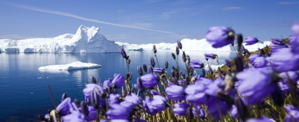 Весна пришла в Арктику на 16 дней раньше, март 2018 г.