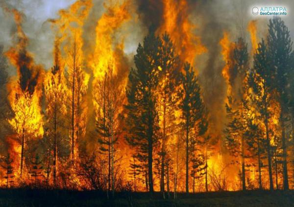 Крупный лесной пожар в Курумканском районе Бурятии, 19-20 мая 2018 года