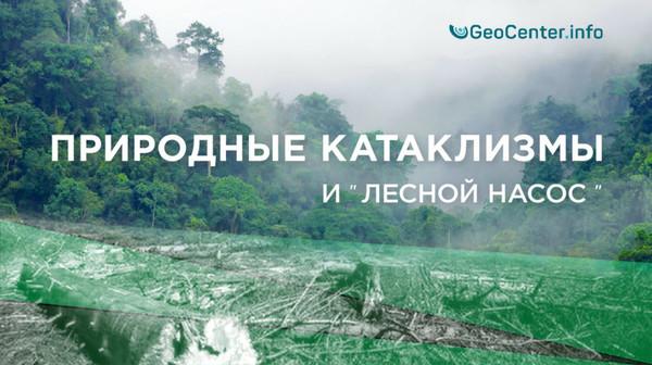 Природные катаклизмы и «лесной насос»