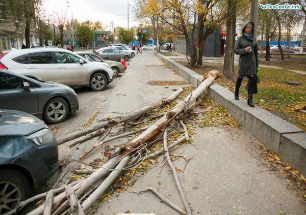 """Ураган """"Гриша"""" в Волгограде"""
