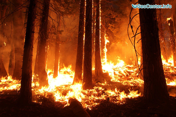 Лесные пожары в Перу