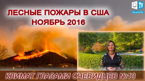 Лесные пожары в США ноябрь 2016. Климат глазами очевидцев 13