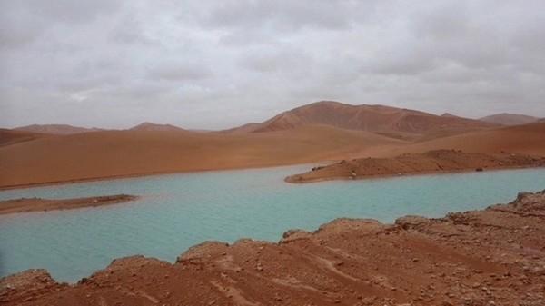 Оазисы в  одном из самых сухих мест на земле