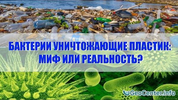 Бактерии и гусеницы уничтожающие пластик: миф или реальность?