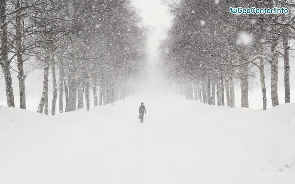 Снежная пурга в Башкирии