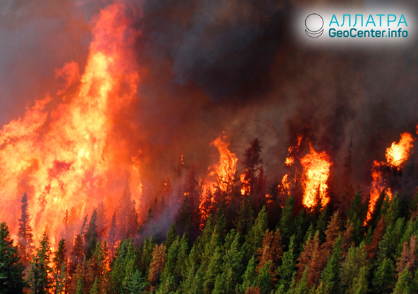 Лесные пожары в Канаде, август 2018