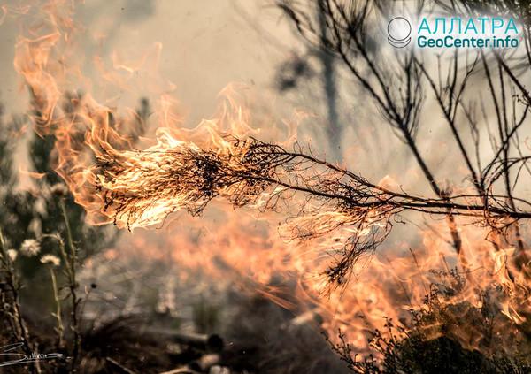Природные пожары в ЮАР, ноябрь 2018