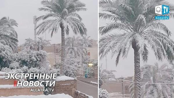 ГНЕВ природы | Снегопады → Иран, Ирак. Наводнения → Индонезия, Африка. Оползни → Боливия, Колумбия