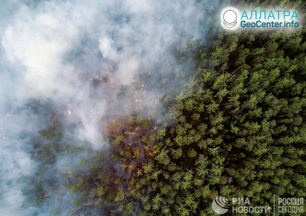 Horia lesy na Sibíri, júl 2019