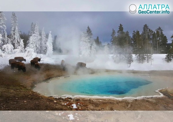 Yellowstone: hlásenia observatória štátu Utah za január a február 2019. Pozorovania vedcov
