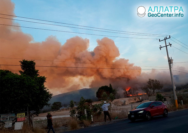 Příroda v ohni, lesní požáry v Mexiku, květen 2019