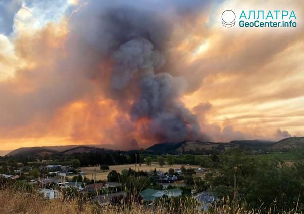 Lesní požáry na Novém Zélandu, únor 2019