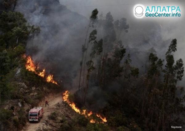 Lesný požiar v Portugalsku, júl 2019