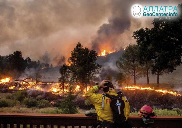 Lesné požiare na planéte, august 2020