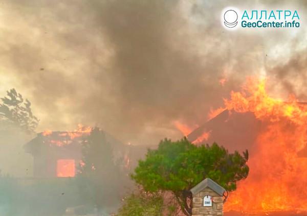 Лесные пожары на планете, ноябрь 2020