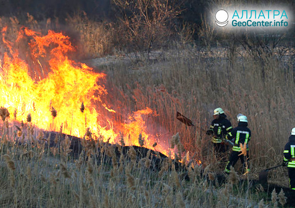 Лесные пожары в Иркутской области, май 2019