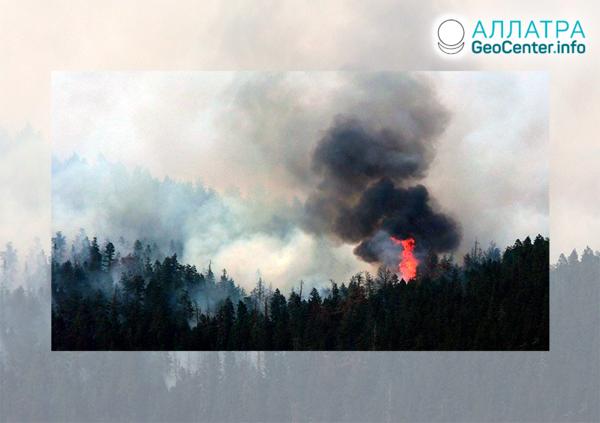 Rozsiahle lesné požiare, koniec mája 2021