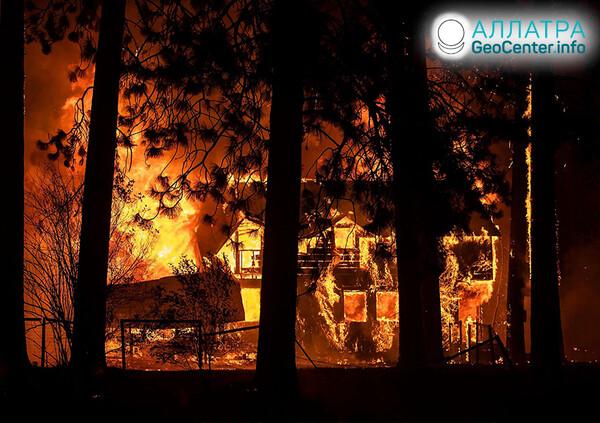 Масштабные лесные пожары, первая половина августа 2021