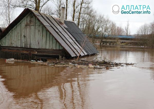 Наводнения в России, ноябрь 2019