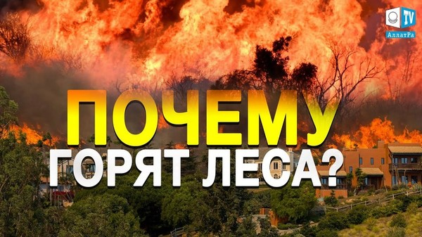 Почему не удаётся погасить лесные пожары? Озоновые дыры и их разрушающее действие