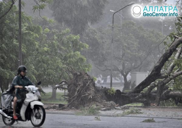 Разрушительные шквалы и штормы, сентябрь 2020