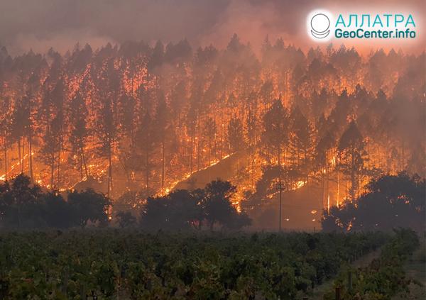 Сильные лесные пожары в странах мира, сентябрь 2020