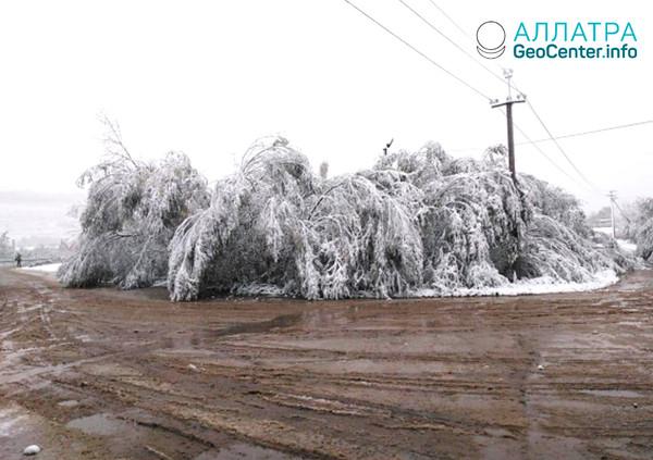 Sneženie v Chabarovskom kraji, september 2019