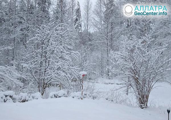 Sneženie začiatkom mája 2021