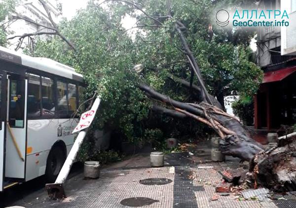 Hurikán v Brazílii, únor 2019