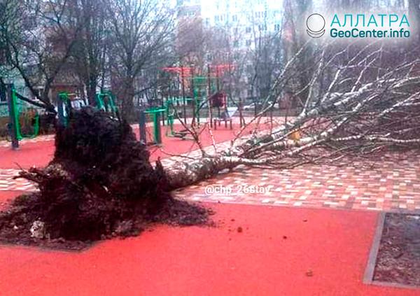 Ураган в Ставропольском крае, февраль 2019