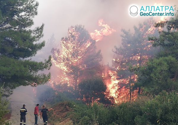 В Греции вновь бушуют лесные пожары, август 2019