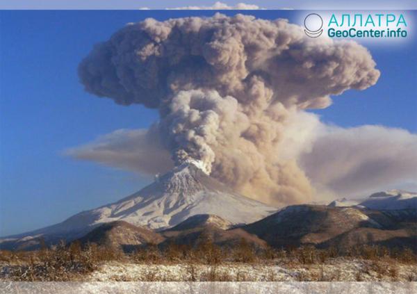 Выброс пепла на вулкане Шивелуч, январь 2019